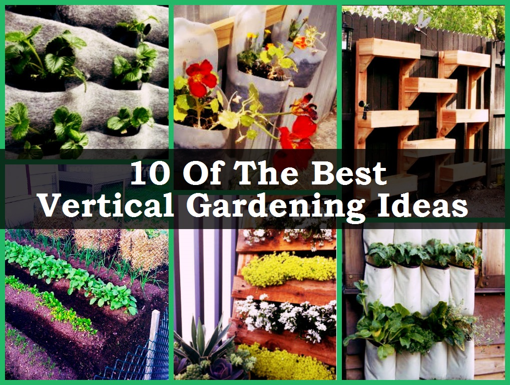 Garden Design Garden Design With Apartment Gardening Ideas