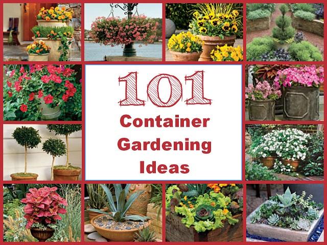 Fall Container Garden Design Ideas Chicagobloom Youtube 25