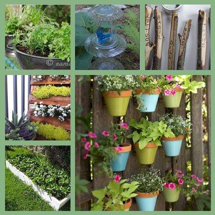 Funky Backyard Garden Ideas