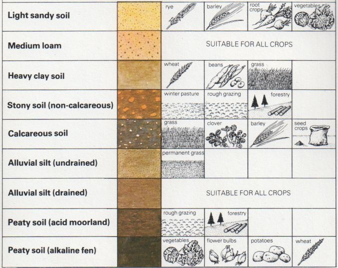 Soil types and agriculture the self sufficiency diy info for Uses of soil for kids