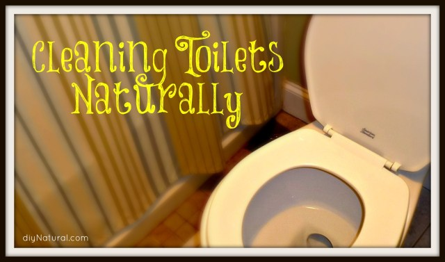 Homemade Toilet Bowl Cleaner: 30 Natural Recipes For the Bowl and Tank