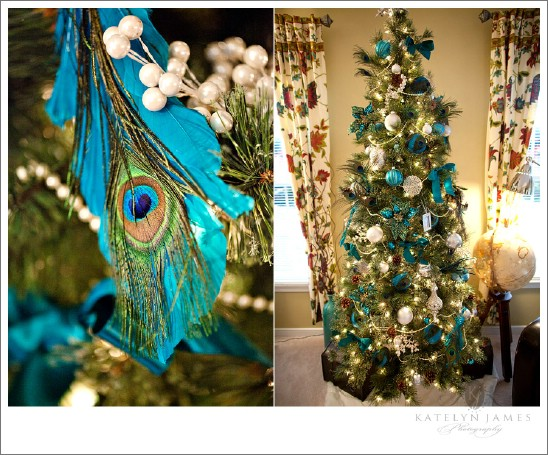 peacock inspired living room toy storage ideas for 30 stunning ways to decorate your christmas diy source katelynjamesblog this