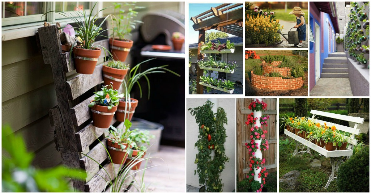 40 Genius SpaceSavvy Small Garden Ideas and Solutions  DIY  Crafts