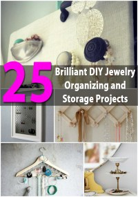 25 Brilliant DIY Jewelry Organizing and Storage Projects ...