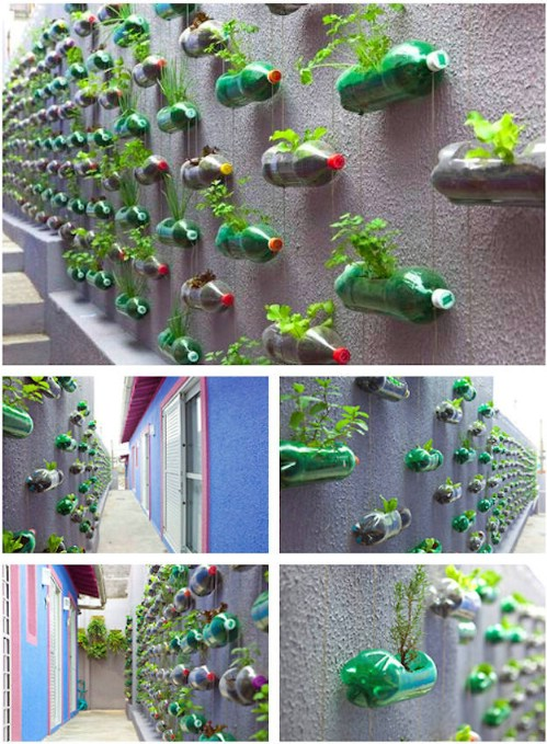 Platic Bottle Vertical Herb Garden