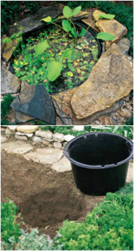 Garden Ideas Using Pots