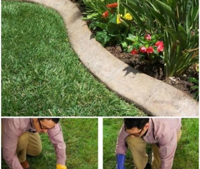Diy Concrete Garden Edging