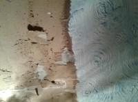 Asbestos Artex Ceiling Removal Cost | www.energywarden.net