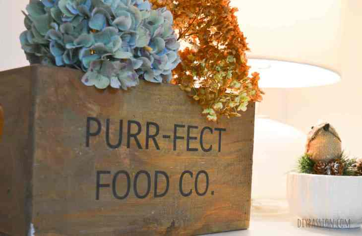 Dried hydrangeas are perfect for fall