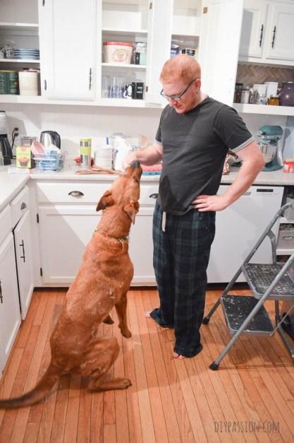 KonMari the Kitchen and Finding Dog Treats