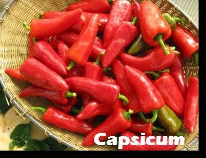 Hot peppers, like cayenne are great for many medicinal purposes