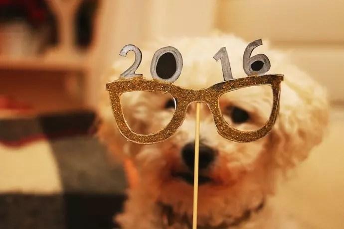nyårs fotopinnar