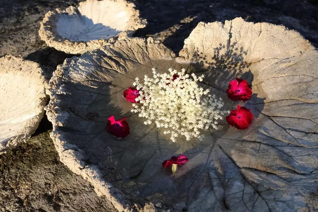 Betongfat av rabarberblad