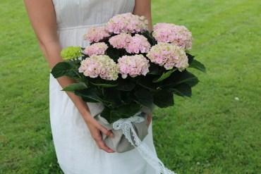 Diy: Blomma som present