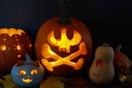 Ryobi Pumpkin Challange