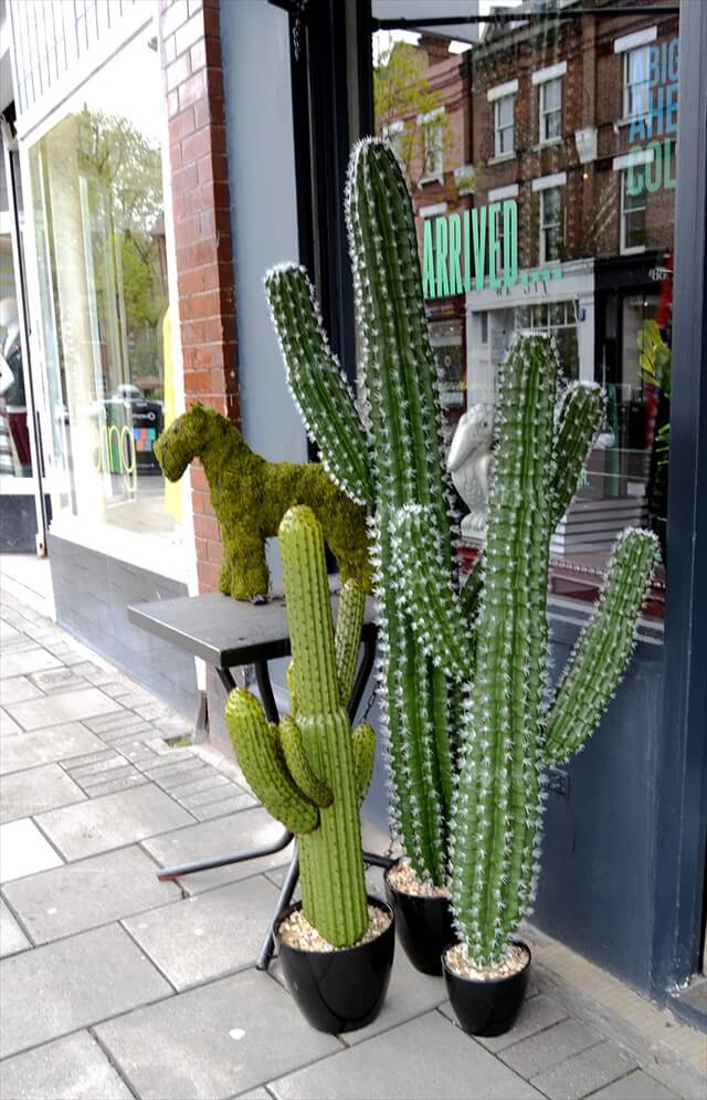 garden chair design plans white metal chairs outdoor 10 diy cactus inspired crafts | to make