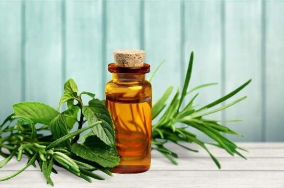 Tea Tree Oil For Cystic Acne Around Mouth