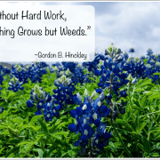 Without Hard Work, Nothing Grows but Weeds