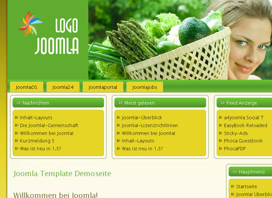 30 Free Joomla Website Themes Collection 15