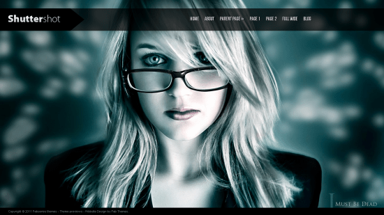 20 Awesome Free Wordpress Themes of 2011 11
