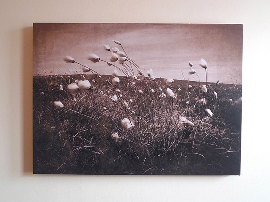 20 Beautiful Canvas Print Designs 5