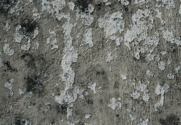 40 Useful Collection of Free Stucco textures for Designers 3
