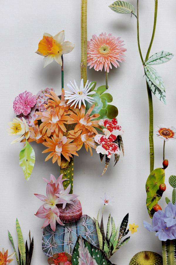 Beautiful Flower Illustrations for designers Inspiration 2