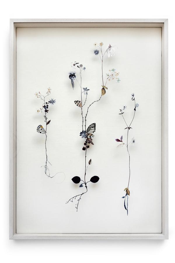 Beautiful Flower Illustrations for designers Inspiration 9