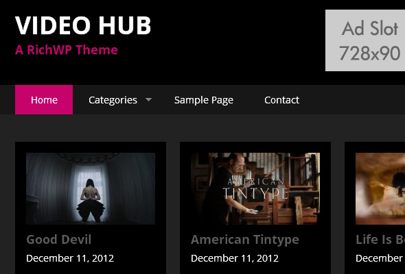 Top Downloading Wordpress Video Sharing Themes -2013 12