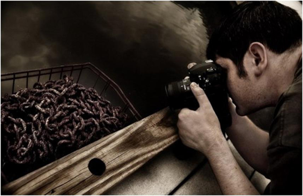 Professional Photography: Ultimate Tips to Get Perfect Picture 3
