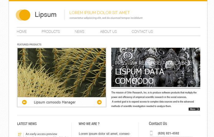 20 Beautifully Designed Free PSD Website Template 10