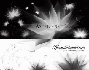 Aster set