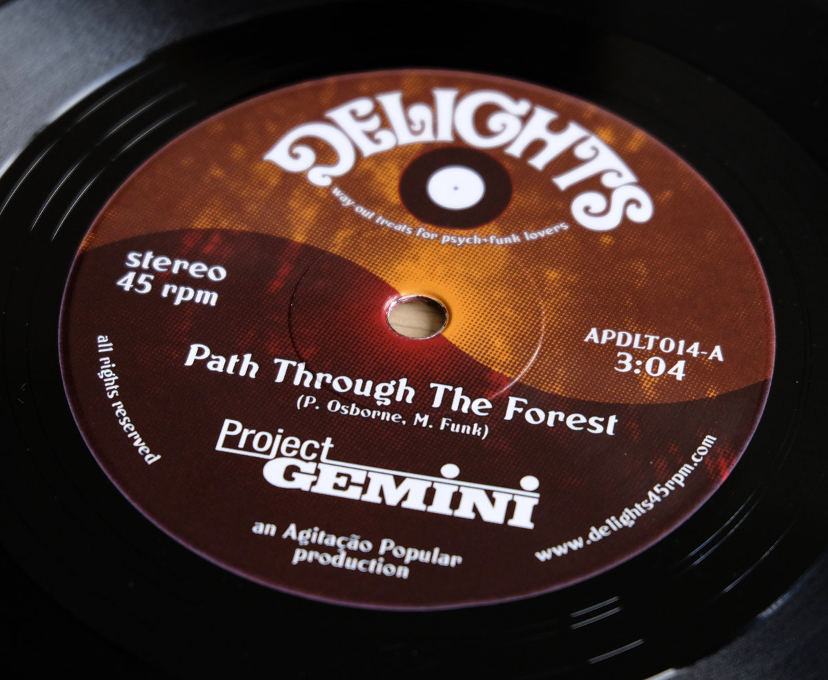 Project Gemini - Path Through the Forest