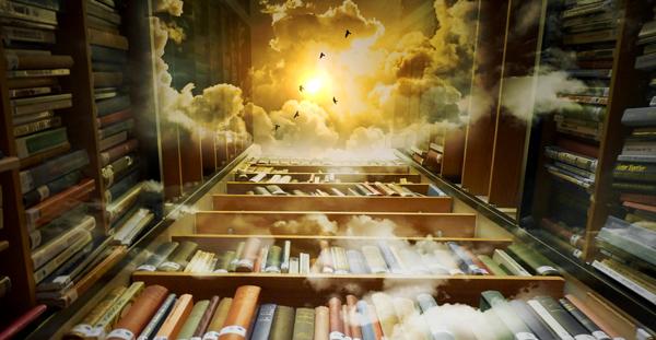 reader's journey in books
