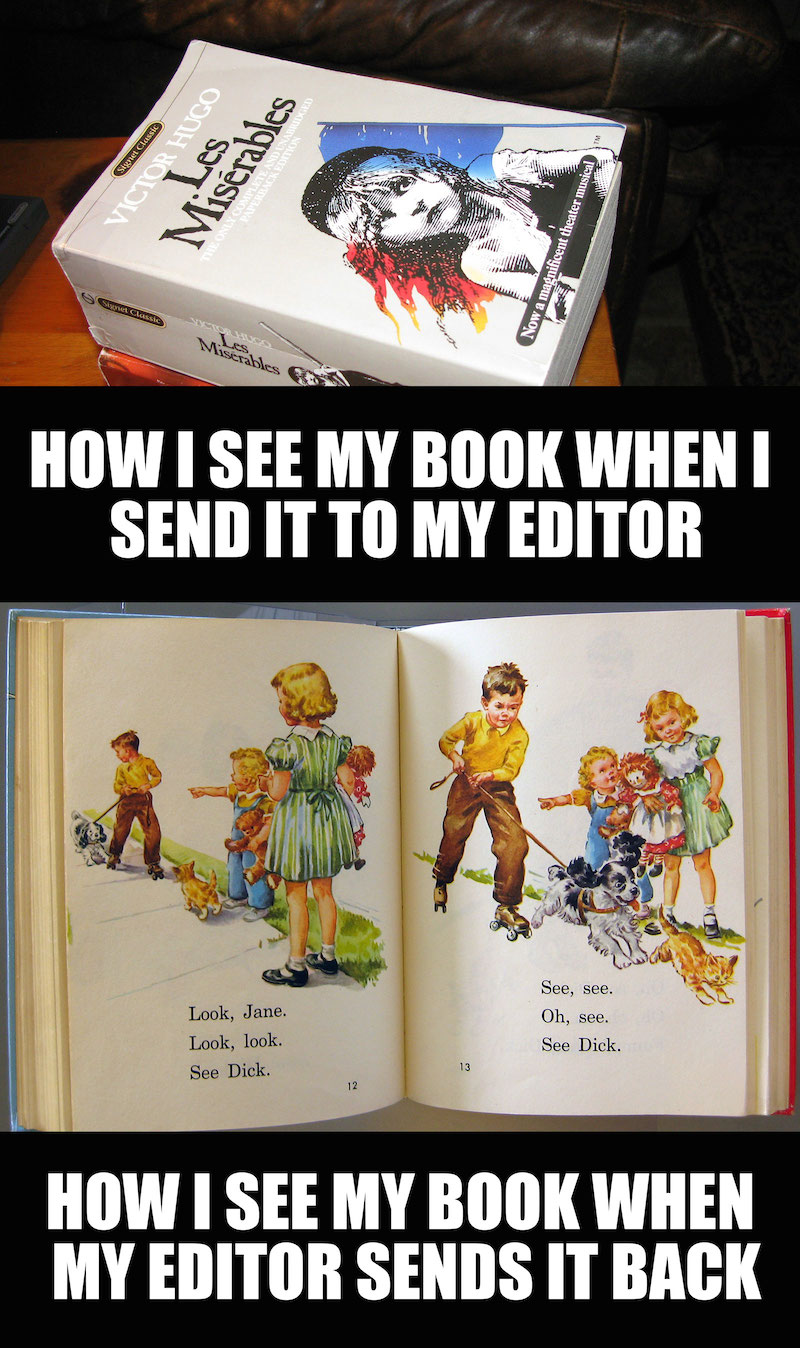Meme: My book when I send it to my editor - djedwardson.com