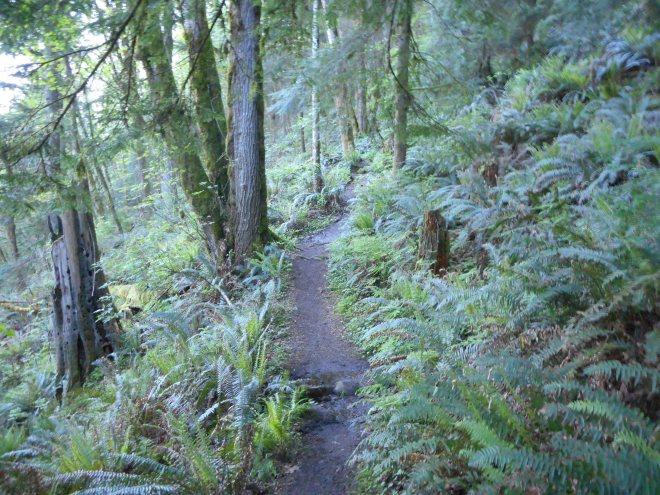 Talus Rock Trail
