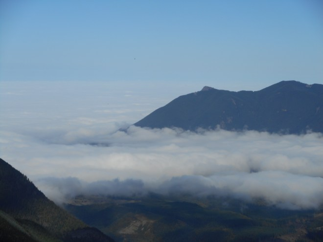 Mount Si floating above the clouds