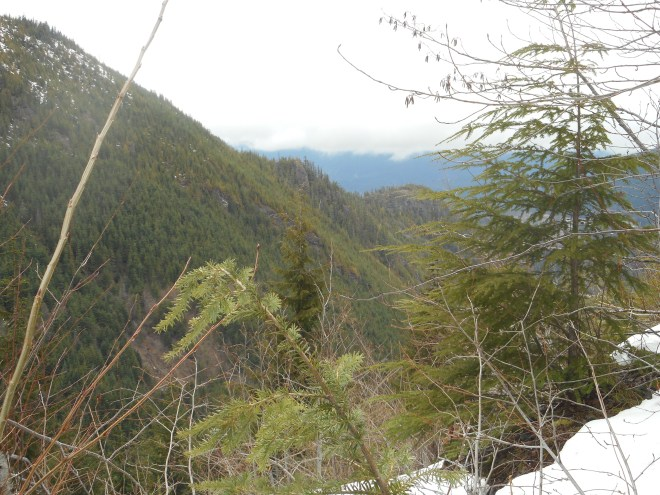 Hall's Point and Olallie View Point