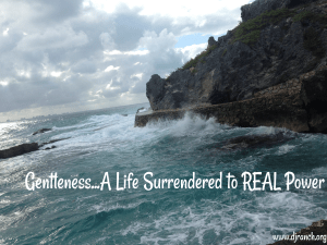 Life Surrendered