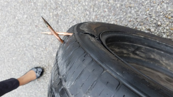 This was an interesting thing to find in a tire