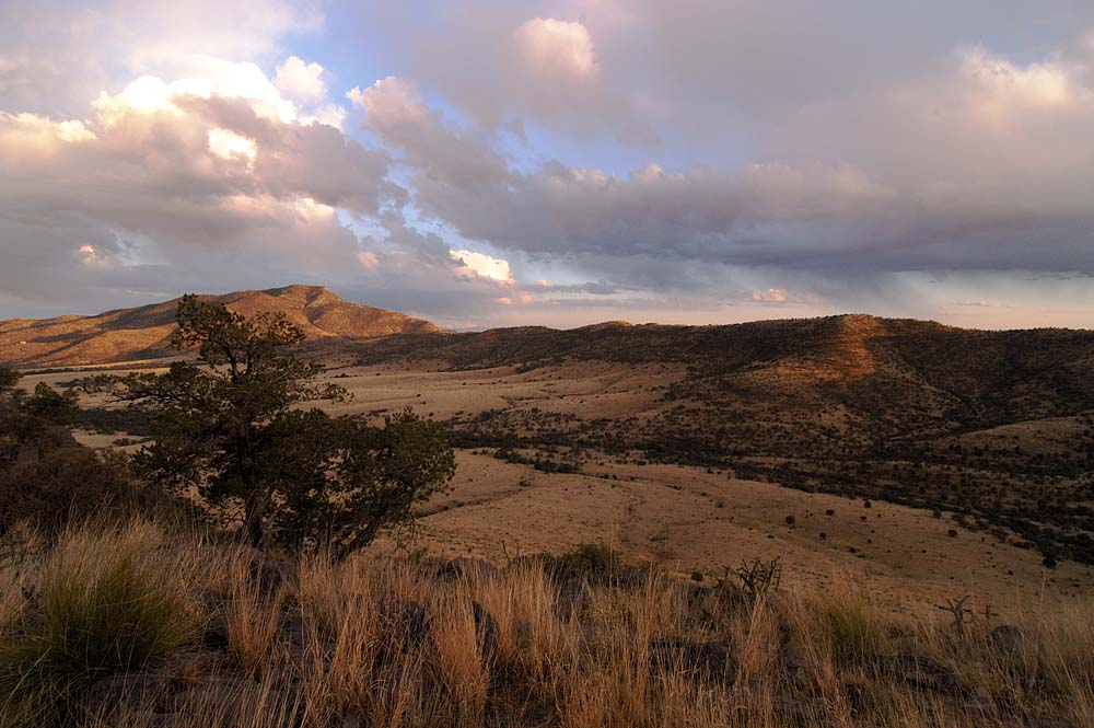 West Texas Davis Mountains  Scenic Pictures