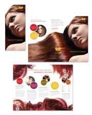hair stylist & salon tri fold brochure