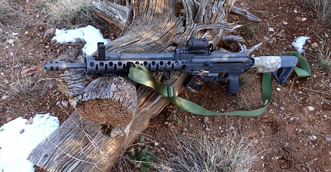 SLR/Carbine