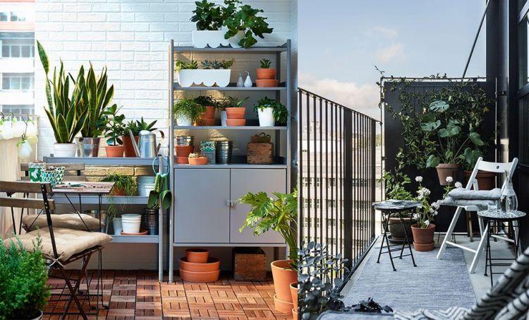 6 Cool Balcony Garden Ideas To Transform Your Man Cave