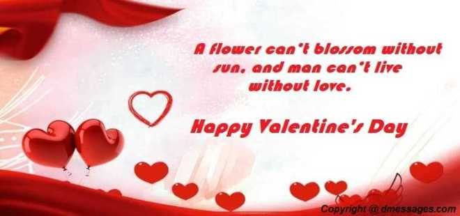 Cute happy valentines day message