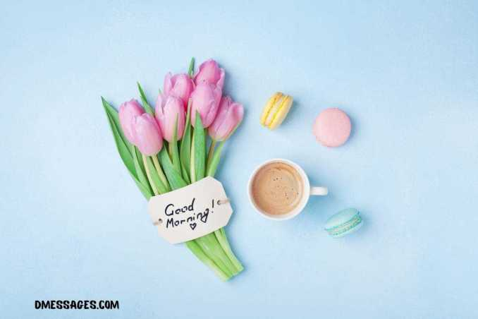 Romantic Good Morning SMS