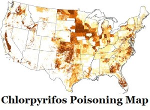 Why is Chlorpyrifos Pesticide not Banned?
