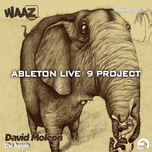The Jungle - Hardgroove / Ableton Live 10 Full Template