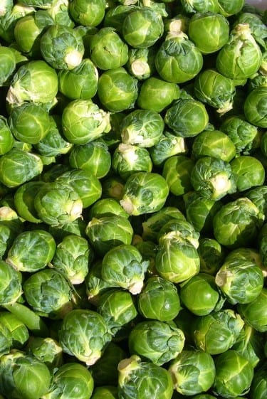 Do not fear the sprouts.