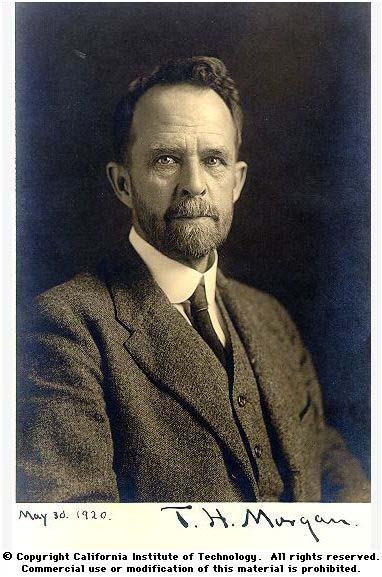 Thomas Hunt Morgan portrait 1920  DNA Learning Center